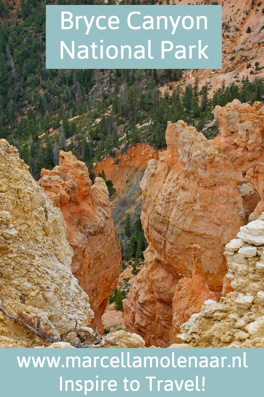 Bryce National Park America