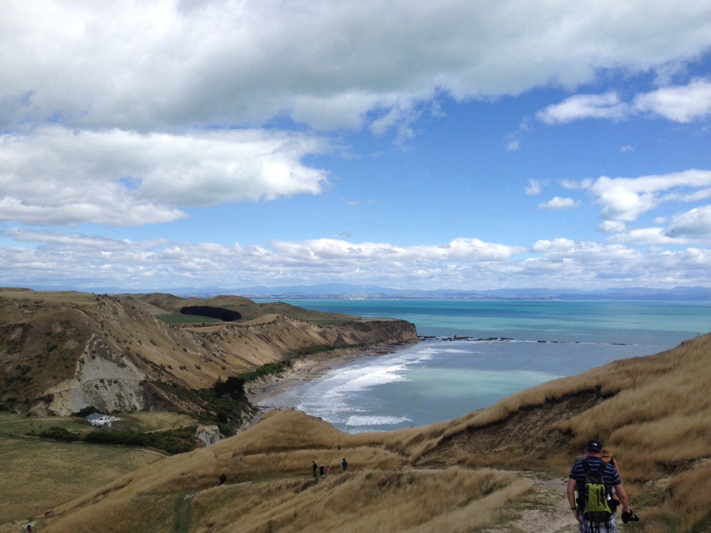 Cape Kidnappers (Napier)