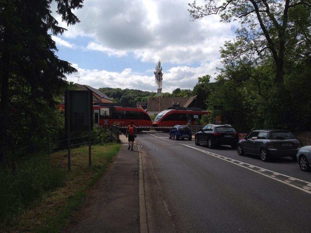Natuurpark Eifel in Duitsland