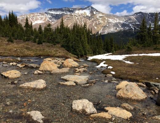 Bow Summit, Banff, Canada