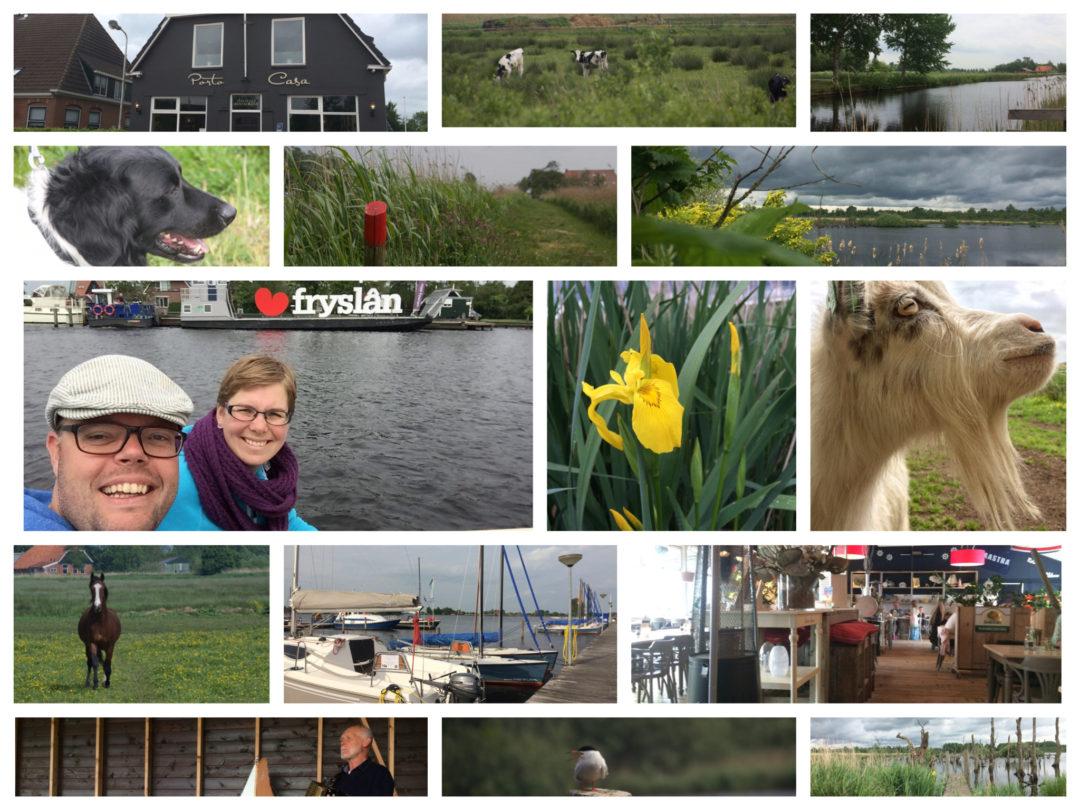 Fête de la Nature in Nationaal Park De Alde Feanen