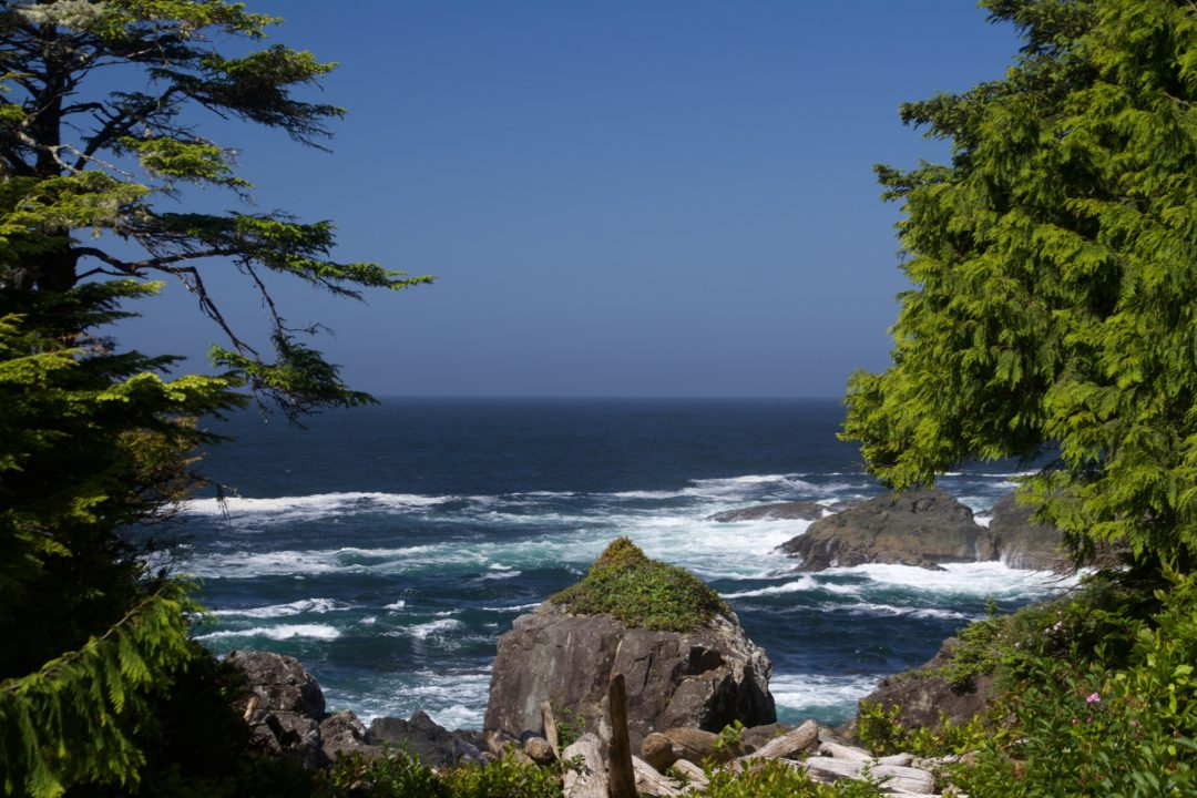 Wild Pacific Trail, Vancouver Island