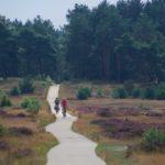 Wandeling Radio Kootwijk4