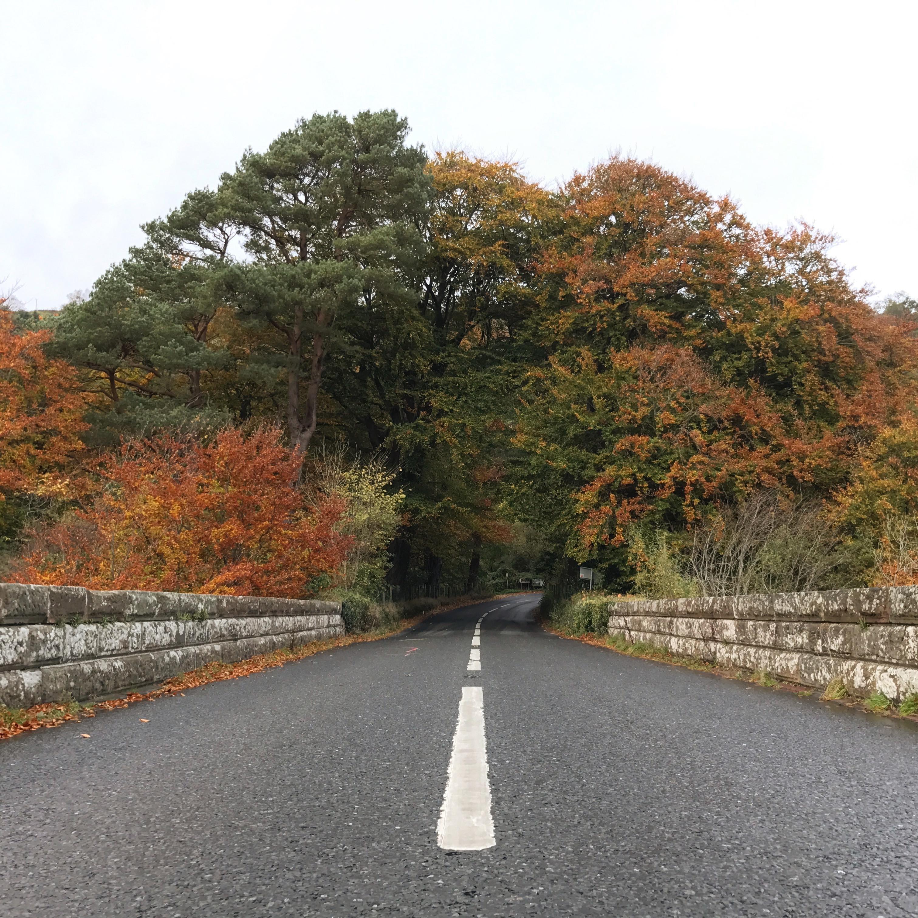 Autumn Nortern Ireland