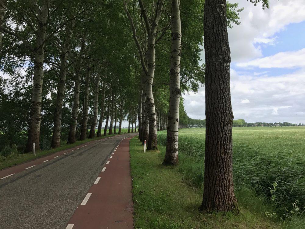 Fietspad Groningen