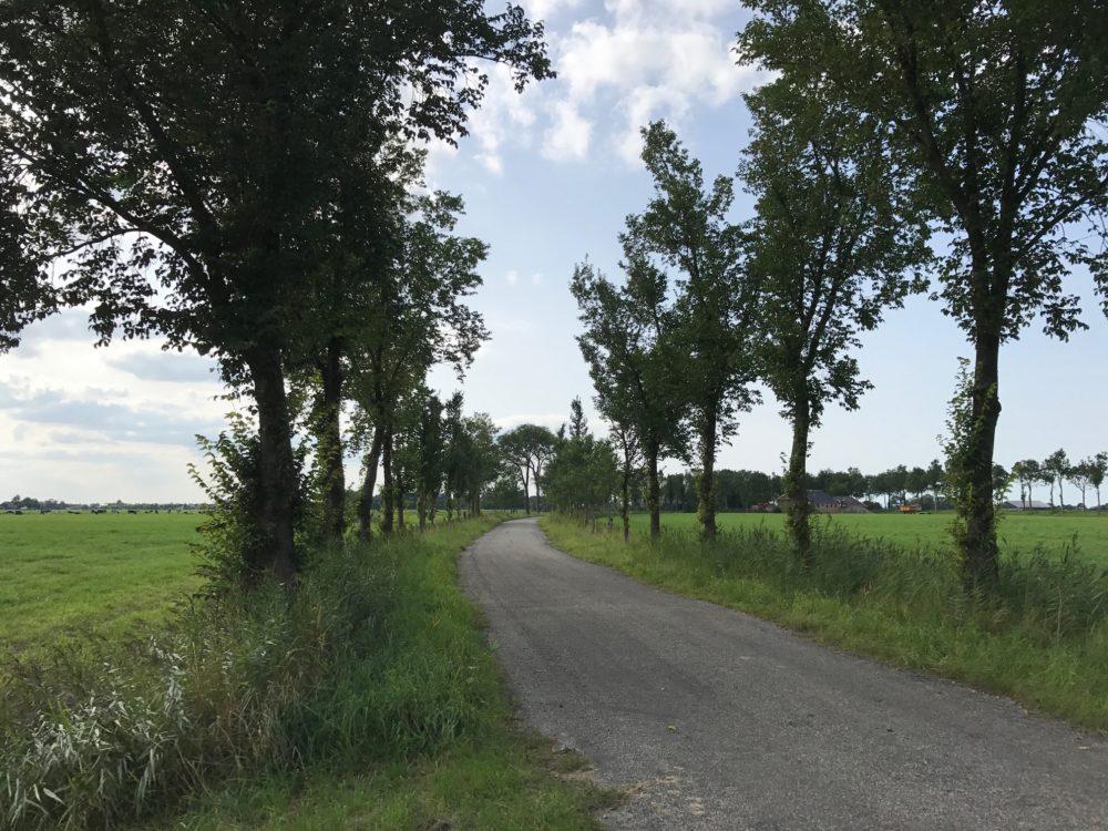 Fietsen Groningen
