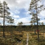 Hiking Safsen, Sweden
