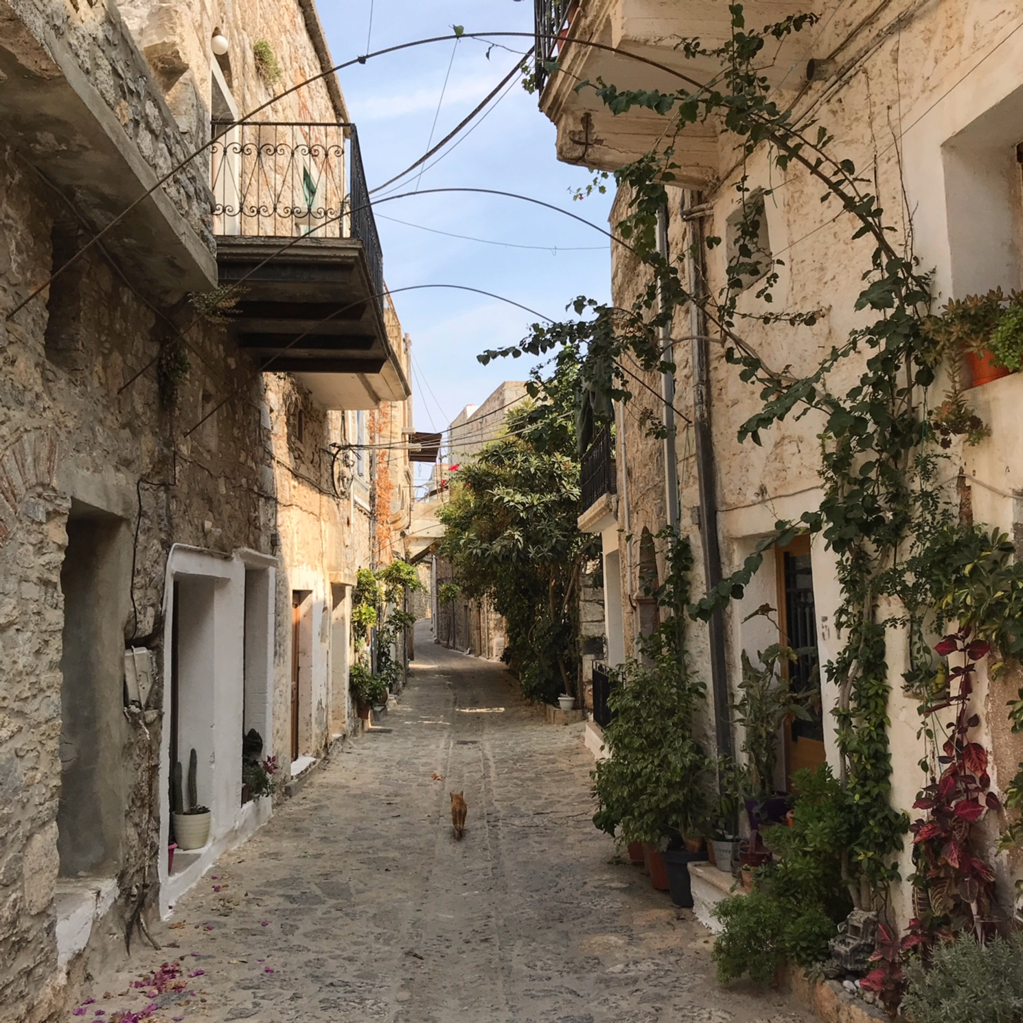 Mesta Chios Greece