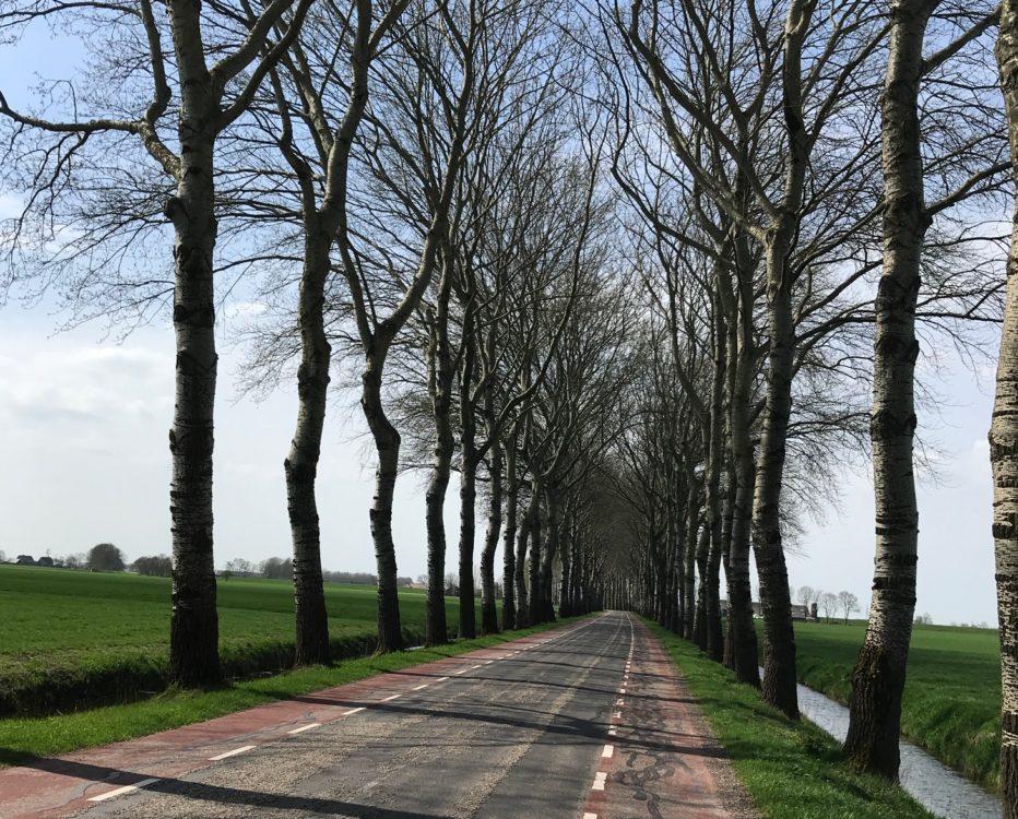 Groningen weg