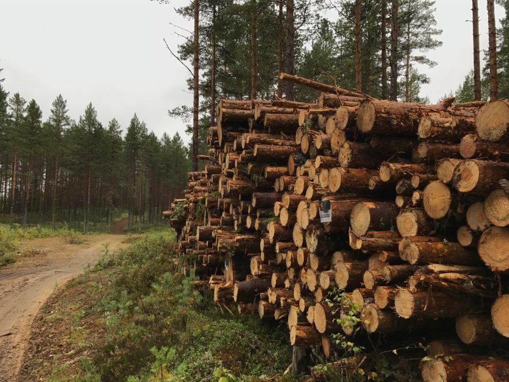 Brattfallet Safsen Dalarna Sweden