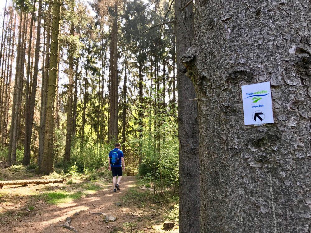 Teutoburgerwald Germany