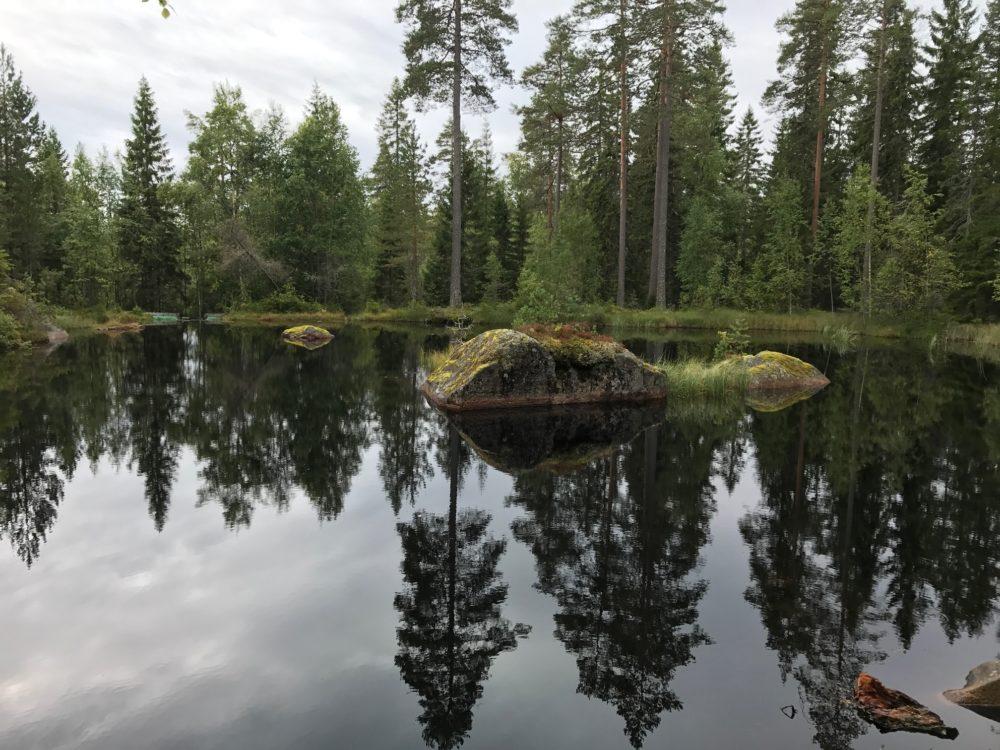 Naturstigen Safsen resort