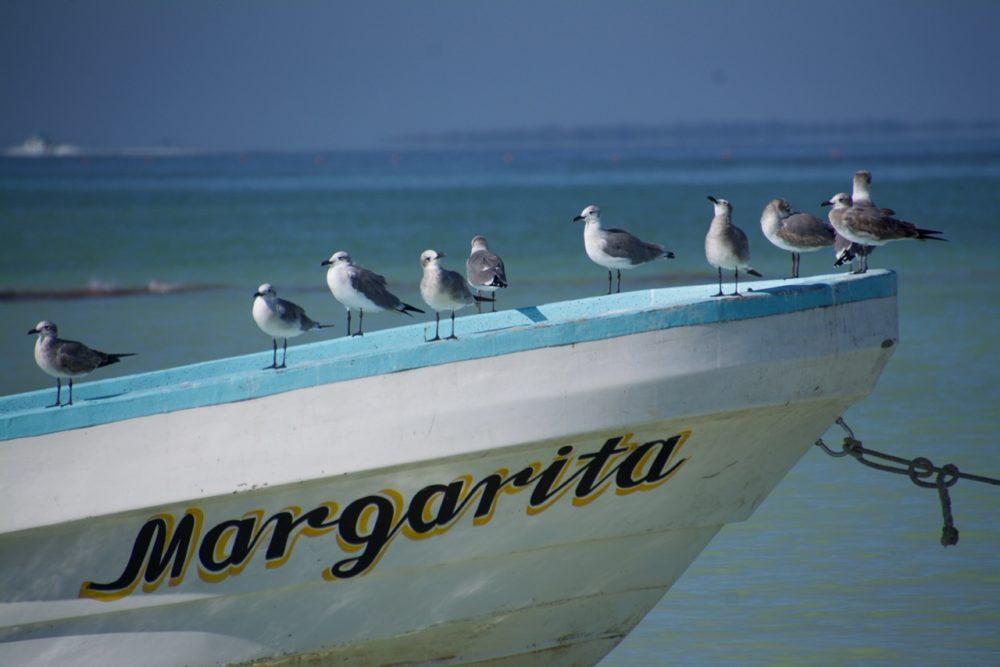 Isla Holbox Mexico boat
