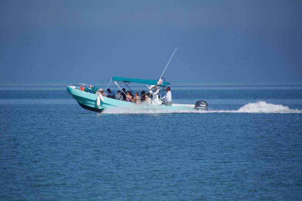 Isla Holbox Mexico boat tour