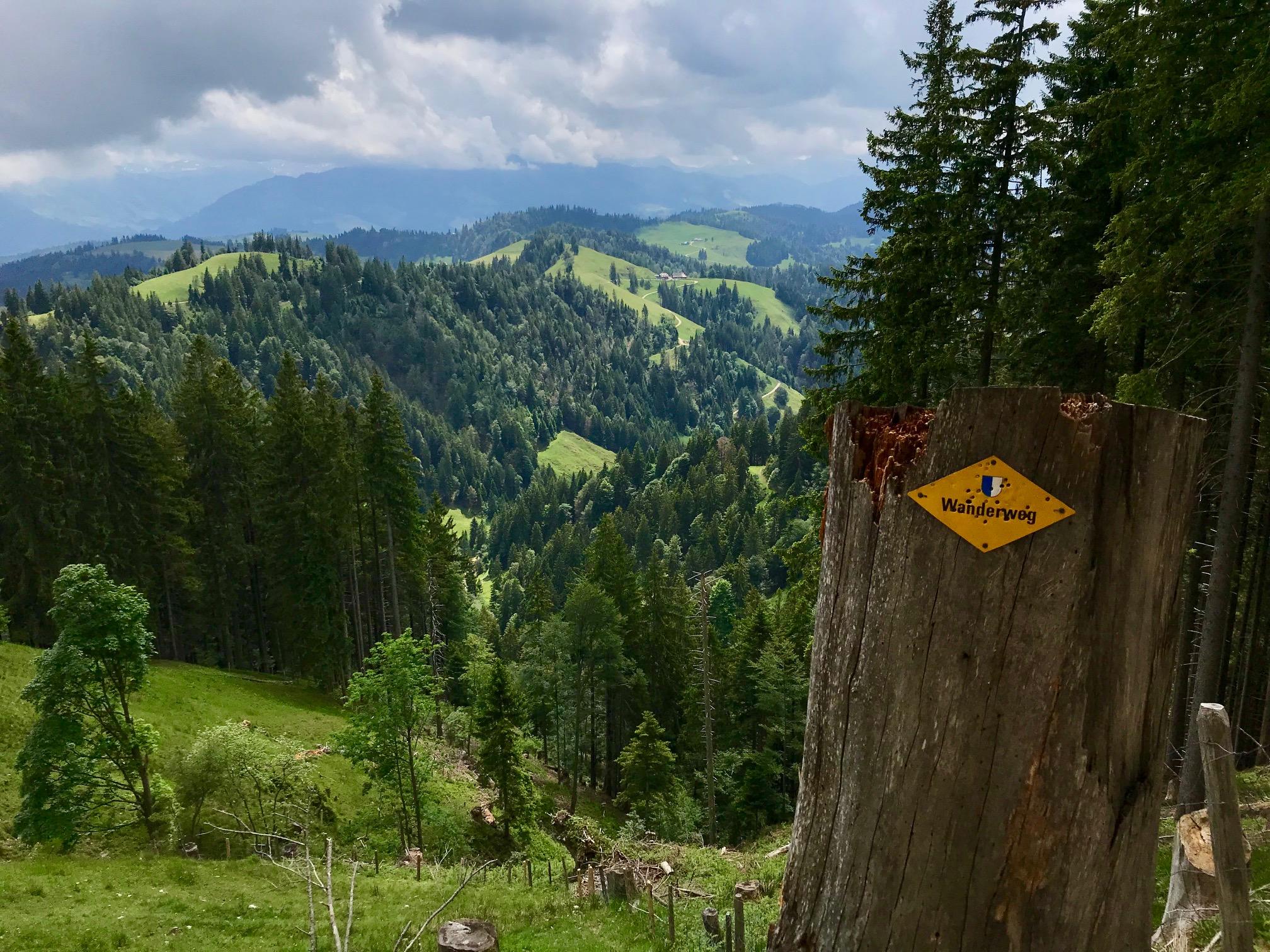 Wanderweg: in Zwitserland kun je natuurlijk perfect wandelen!