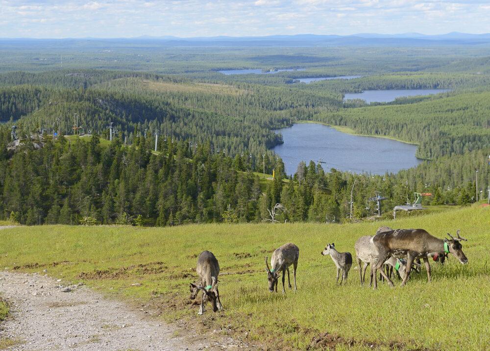shutterstock_Ruka Finland