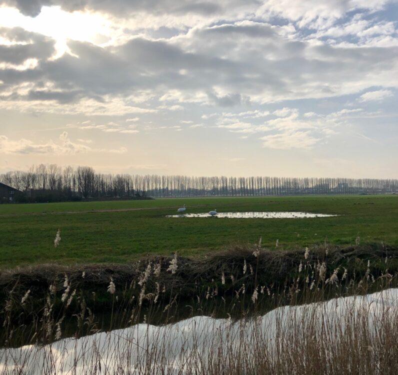 Kardinge Groningen