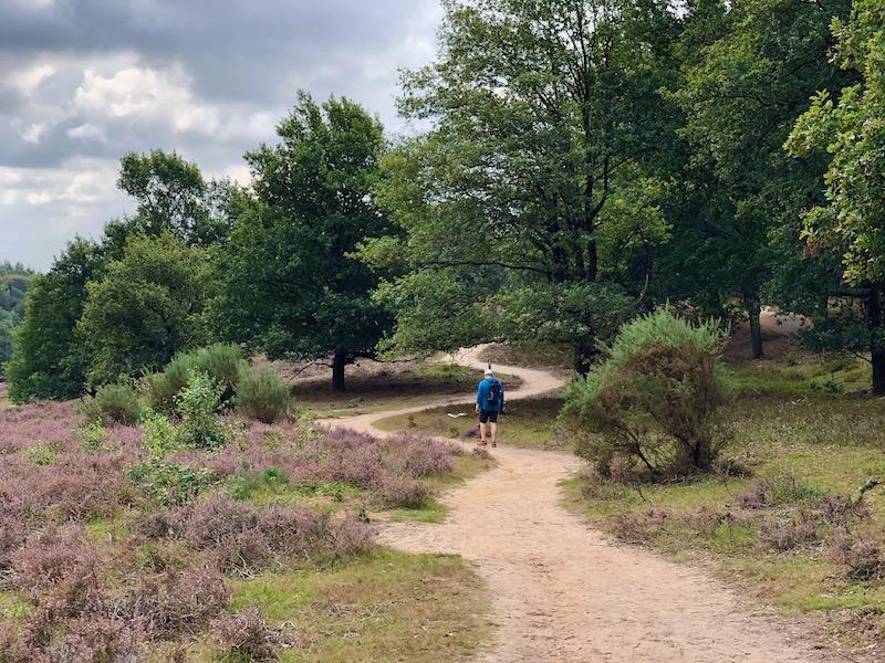 Nationaal Park de Veluwezoom