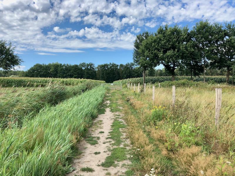 Nationaal Park de Meinweg Limburg