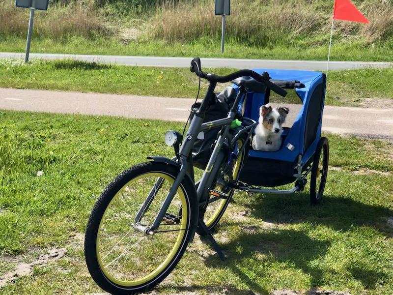 Bros fietskar Sint Maartenszee